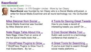 Google Webmaster Tools - Google Sitelinks