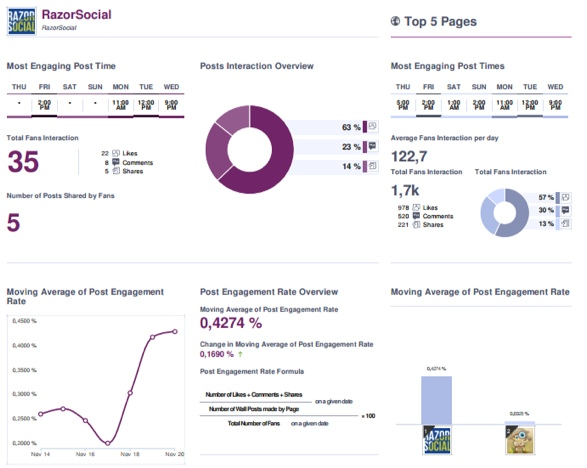Social bakers example report