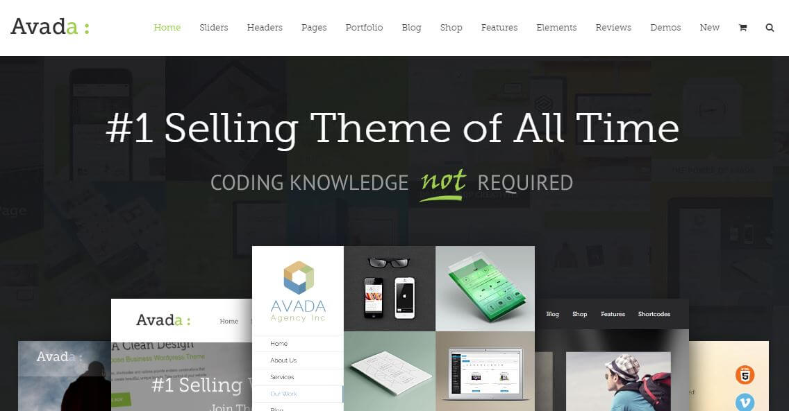 the avada wordpress theme